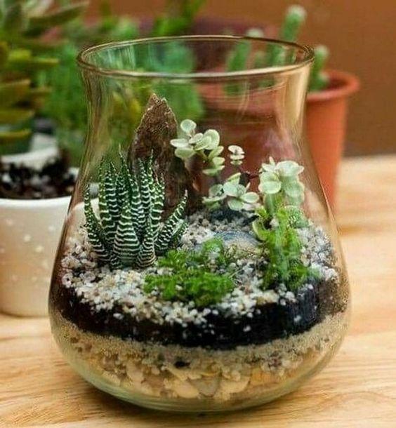 Ide Hadiah Unik Terrarium