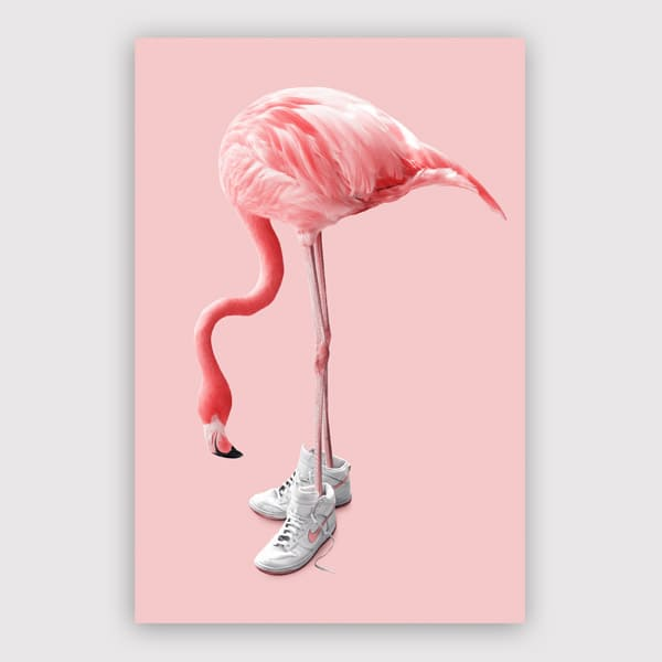 Jonas Loose - Sneaker Flamingo