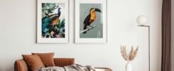 cover Blog Fly Like a Bird